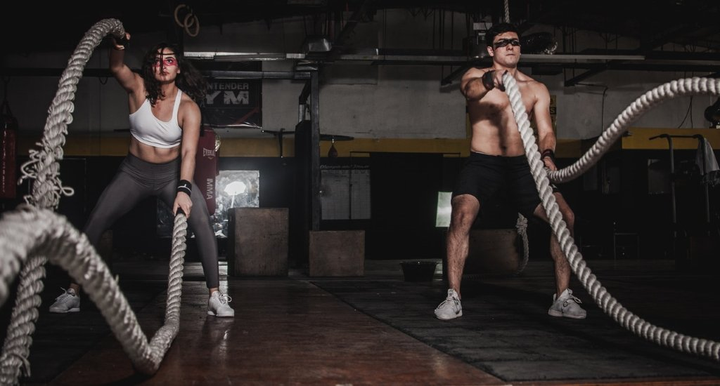 gym workouts to lose weight for eginners