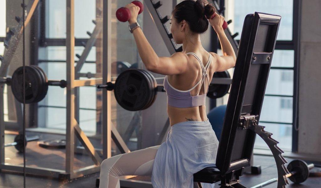 upper back workouts
