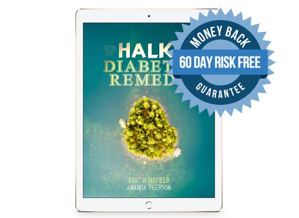 halki diabetes remedy review - what is the halki diabetes remedy program?